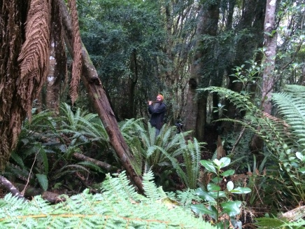 Adam Page playing bansuri in Seaward bush reserve.