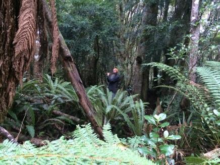 Adam Page playing bansuri in Seaward bush reserve.